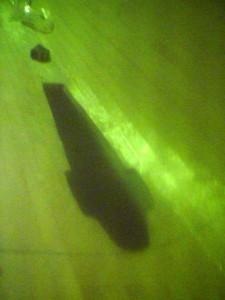 sb dagger case side deck exit